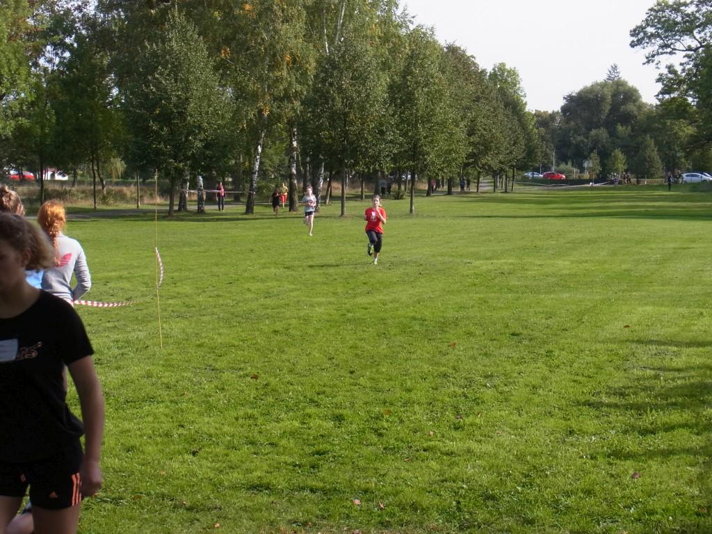 Sie sehen Bilder des Artikels: 3. Seckendorff-Crosslauf
