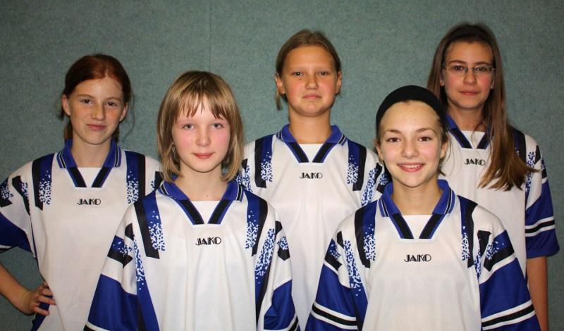 Sie sehen Bilder des Artikels: Kreisfinalrunde Volleyball WK IV 2009