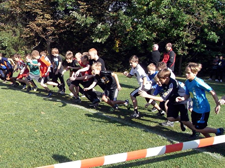 Sie sehen Bilder des Artikels: Kreiscrosslauf 2012