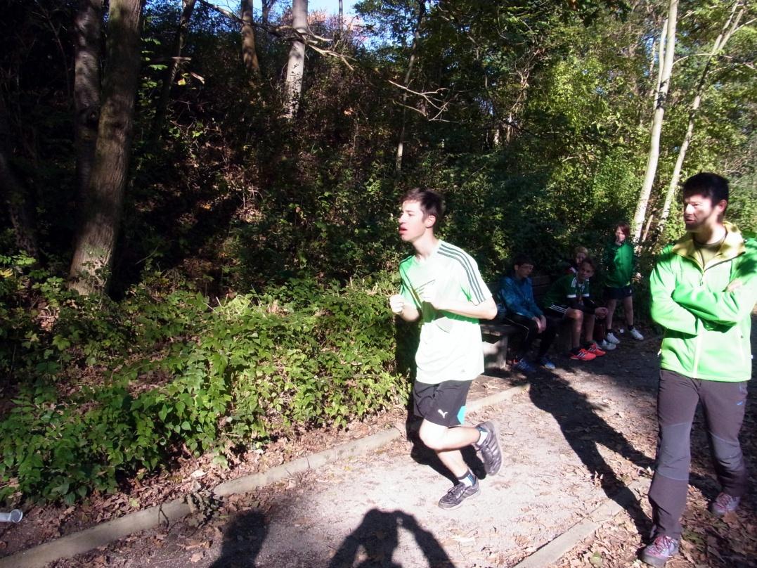 Sie sehen Bilder des Artikels: Kreiscrosslauf 2014