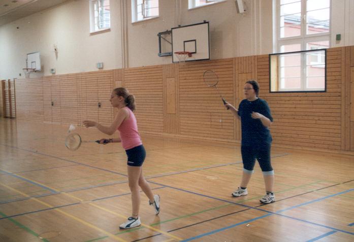 Sie sehen Bilder des Artikels: Badminton Landesfinale