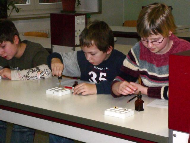 Sie sehen Bilder des Artikels: Grundschultage 2006